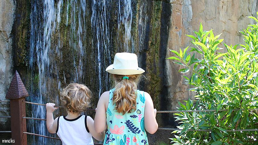 Niños disfrutando en Bioparc