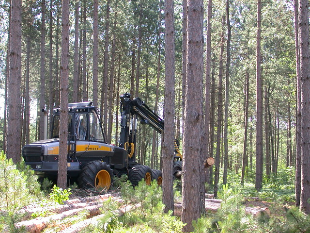 Forest machinery in National Forest