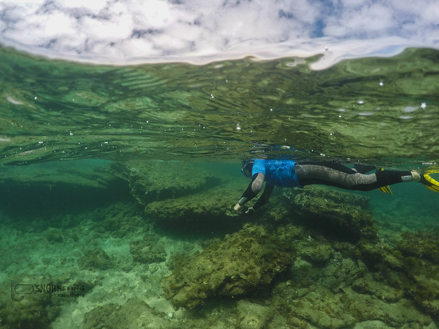 Snorkeling en la Playa de Las Canteras con Snorkeling Experience