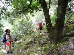 Après la traversée du Valdu Grande : la troupe sur le chemin sous la carbunara