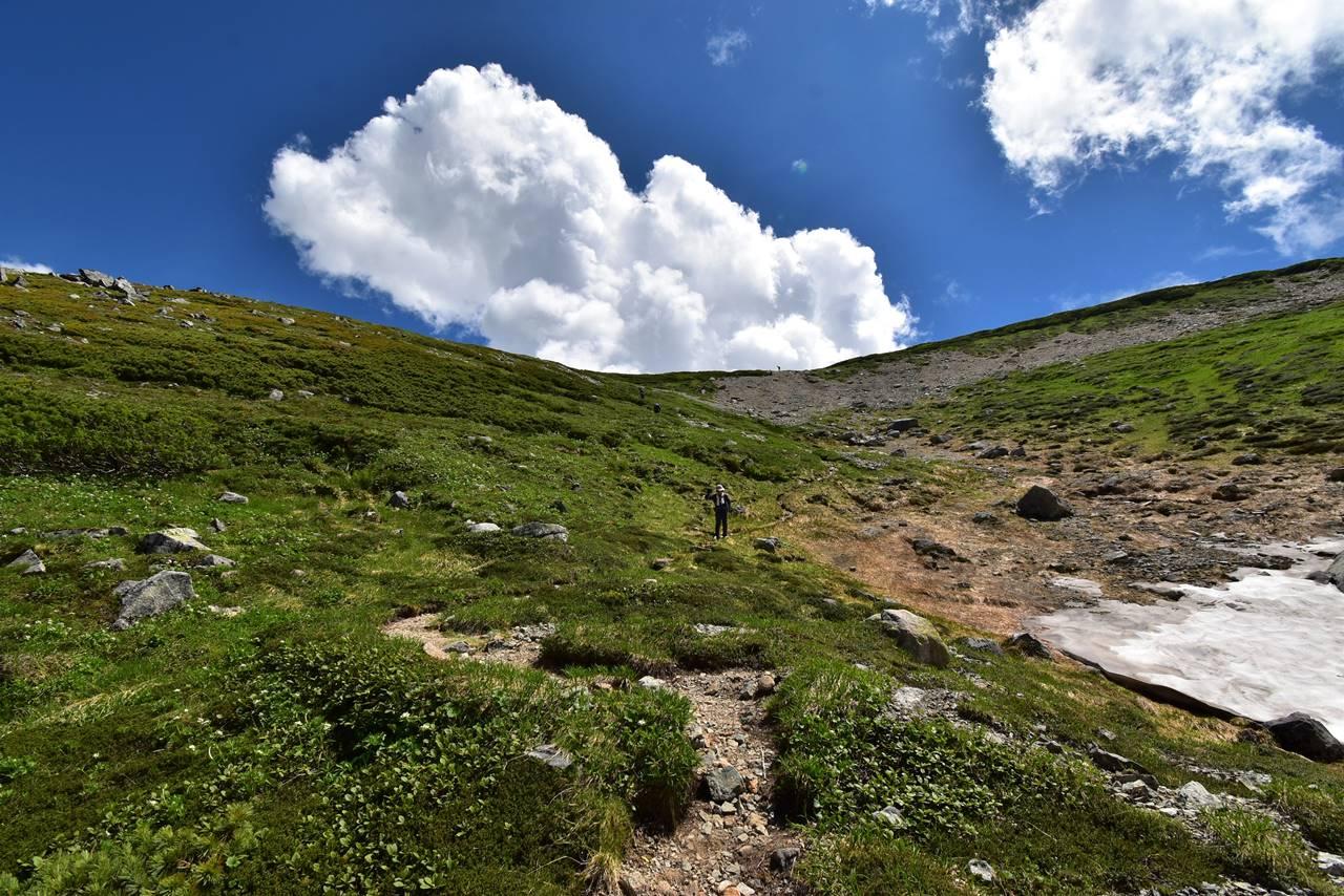 双六岳 夏山登山