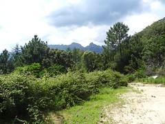 Départ à la barrière vrillée par la piste de Mela/lora