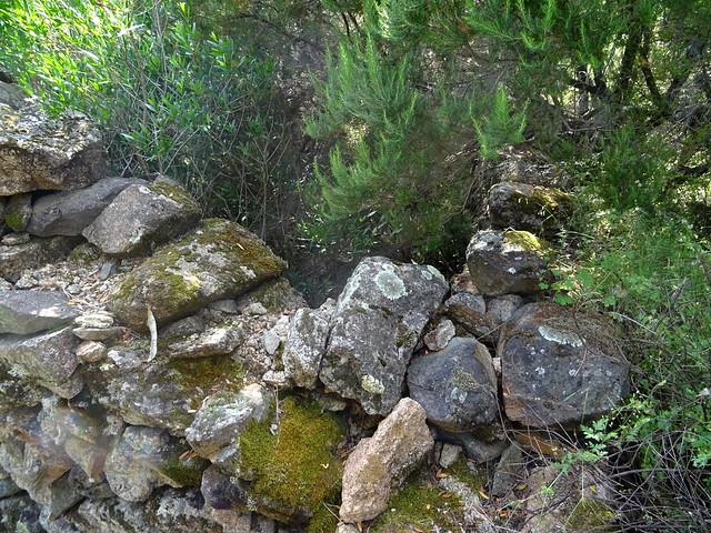 Vues de la bergerie ruinée