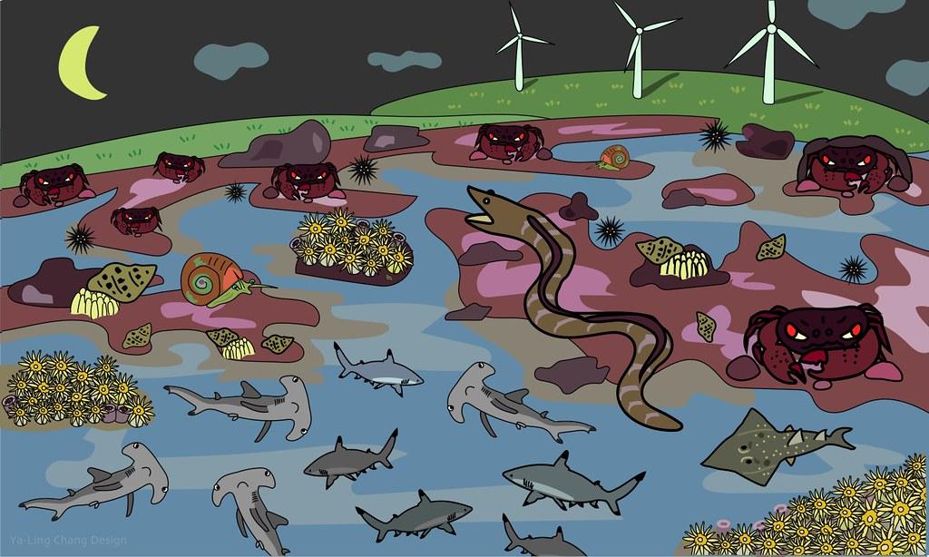大潭藻礁豐富生態系(張雅凌 繪)