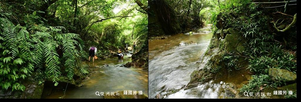 龜壽谷溪3_調查上段溪谷在森林及農墾跡地間穿越,但溪岸植被維持得相當自然。