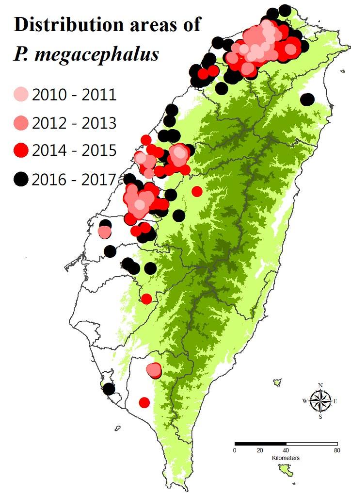 2010-2017年,斑腿樹蛙在台灣的分布圖。圖片來源:楊懿如