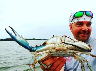 Photo of man holding blue crab