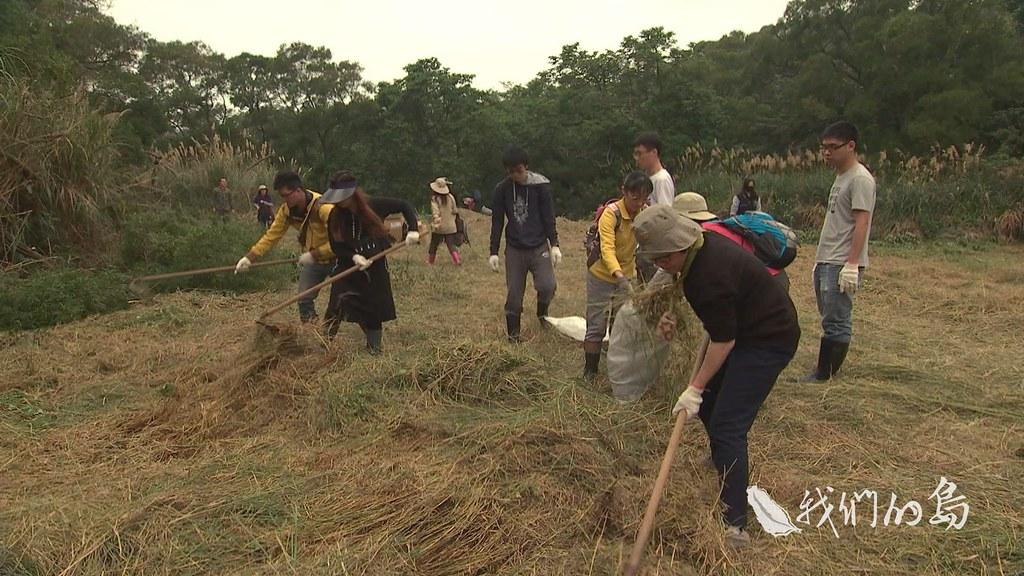 962-3-11ss難得有豐富的食蟲植物棲地,荒野保護協會新竹分會爭取將蓮花寺濕地劃設為重要濕地或保留區。