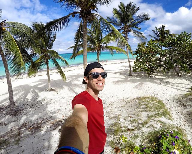 En uno de los palmerales de la playa Esmeralda en la provincia de Holguín