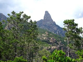 Sur le plateau de Livisani : Punta Bunifazinca