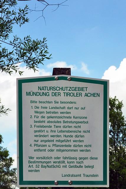 Chiemsee-Urlaub 2018 ... Naturschutzgebiet Hirschauer Bucht bei Grabenstätt ... Mündungsgebiet Tiroler Achen ... Iris-Blüte im Mai und Juni ... Brigitte Stolle