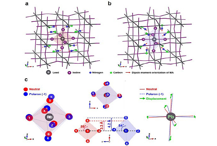 Theoretically predicted structures of MAPbI3 hybrid perovskite