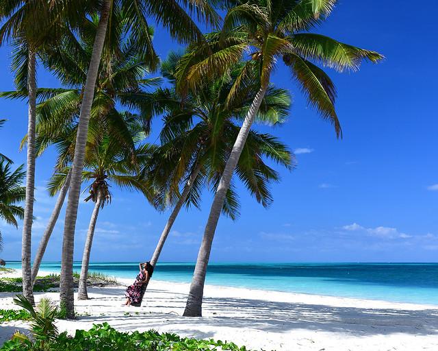 Playa con palmeras en Cuba en Cayo Levisa, uno de los cayos más bonitos de Cuba