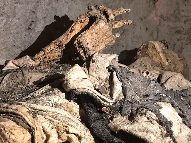 Momia de fraile carmelita en la cripta de Liétor (Albacete)