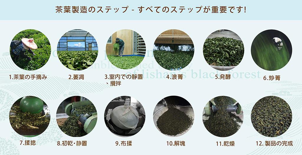 茶葉製造のステップ