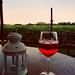 Spritz & vineyards