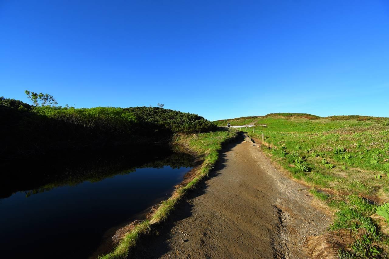 双六岳 湿原の登山道