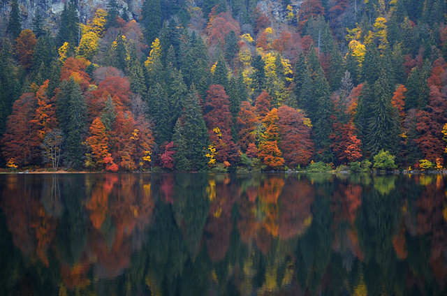 The colourful lake, Black Forest, Germany
