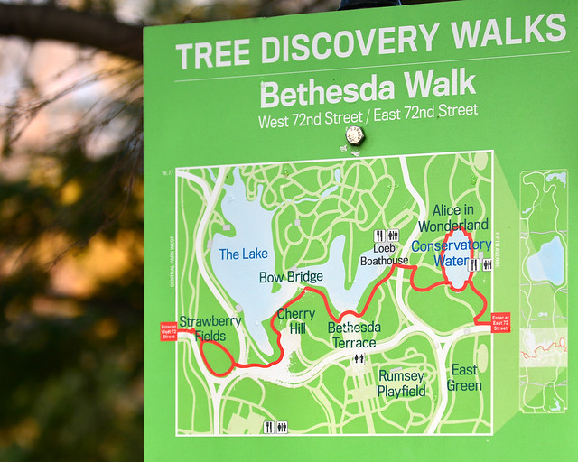 Mapa del Tree Discovery Walks de Central Park