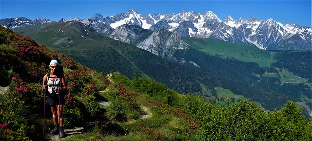 Mont Blanc massif from Combin