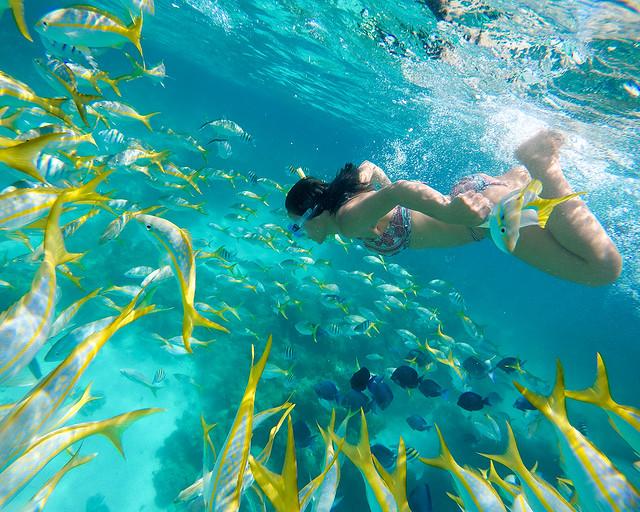 El mejor snorkel de Cuba en Cayo Largo del Sur