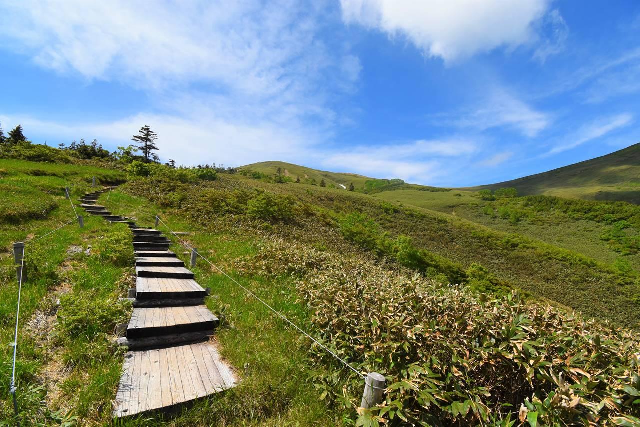 夏の平標山登山
