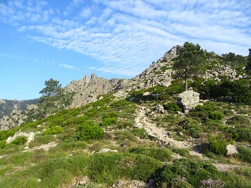 Bocca d'Arghjetu : Punta Furcuta et le chemin de montée