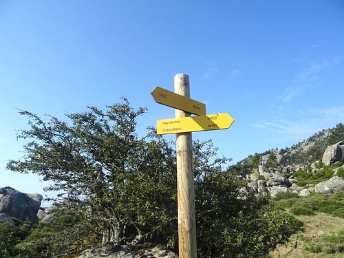 Panneaux à Bocca di Funtanedda