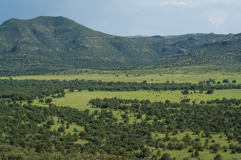 Verdant grassland valley in the Davis Mountains