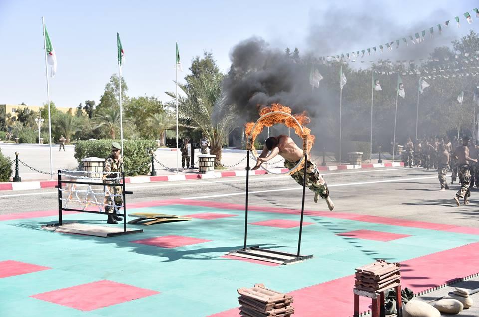 موسوعة الصور الرائعة للقوات الخاصة الجزائرية - صفحة 64 42328346434_9b2927b0b4_o