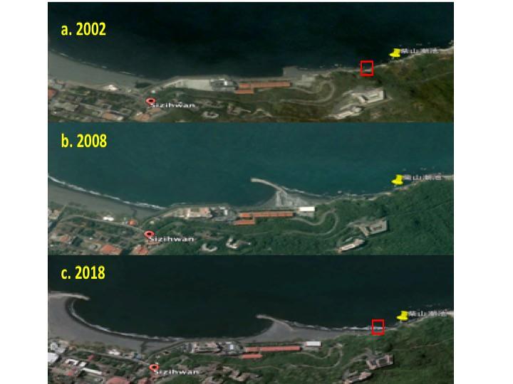 Google Earth 影像顯示西子灣至柴山海岸 a. 2002年;b. 2008;c. 2018,柴山多杯孔珊瑚的模式地點以黃色指標標示。