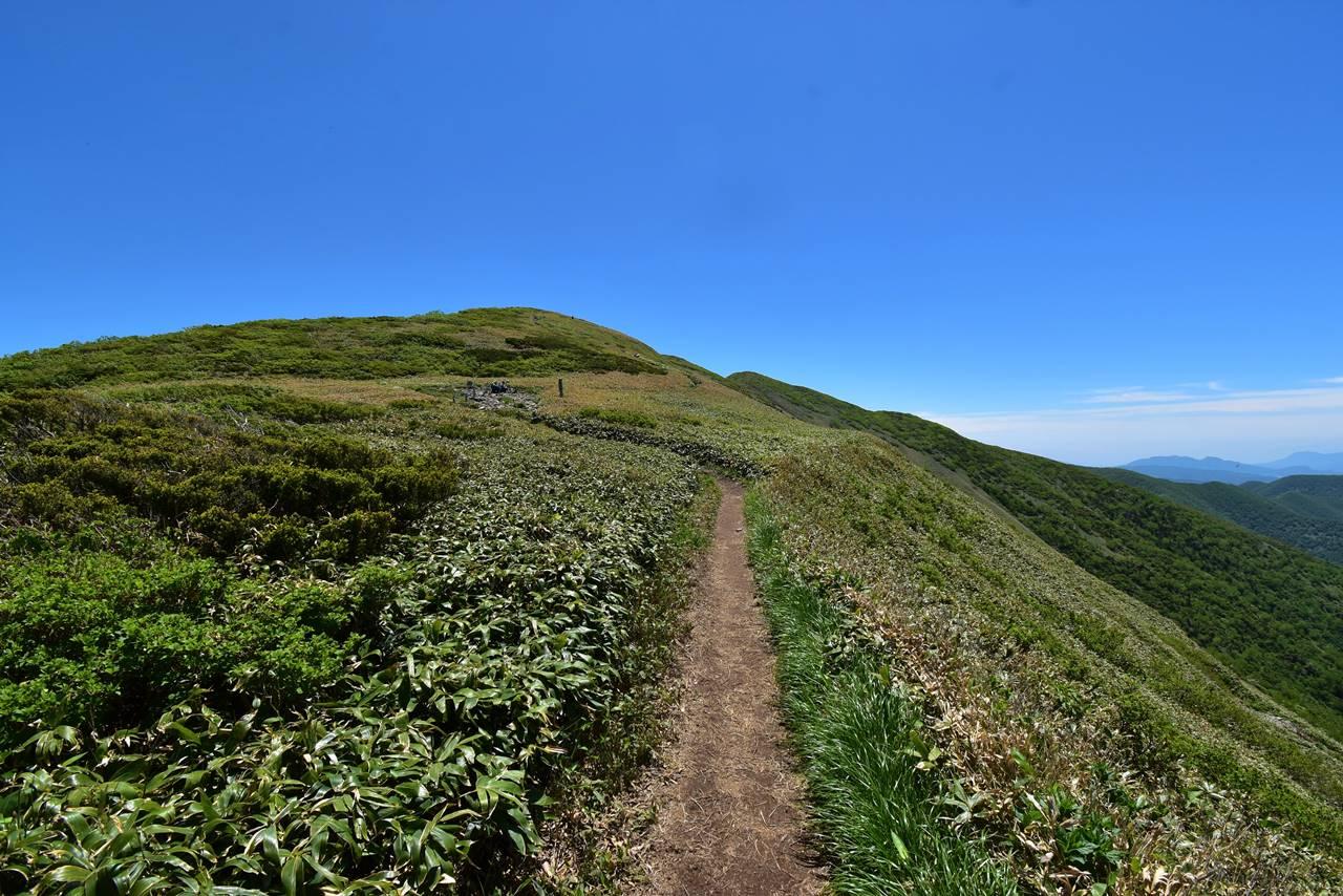 平標山山頂までの稜線登山
