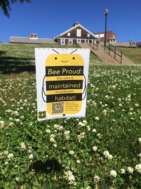A Bee Proud sign in a lawn