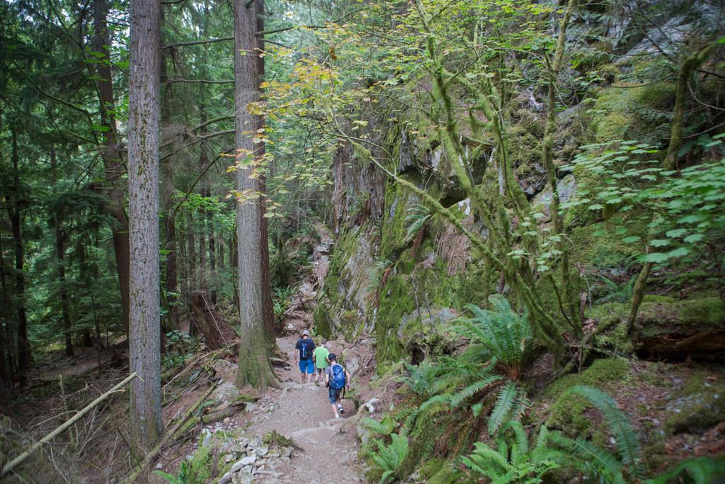 Jug Island Trail at Belcarrra Regional Park