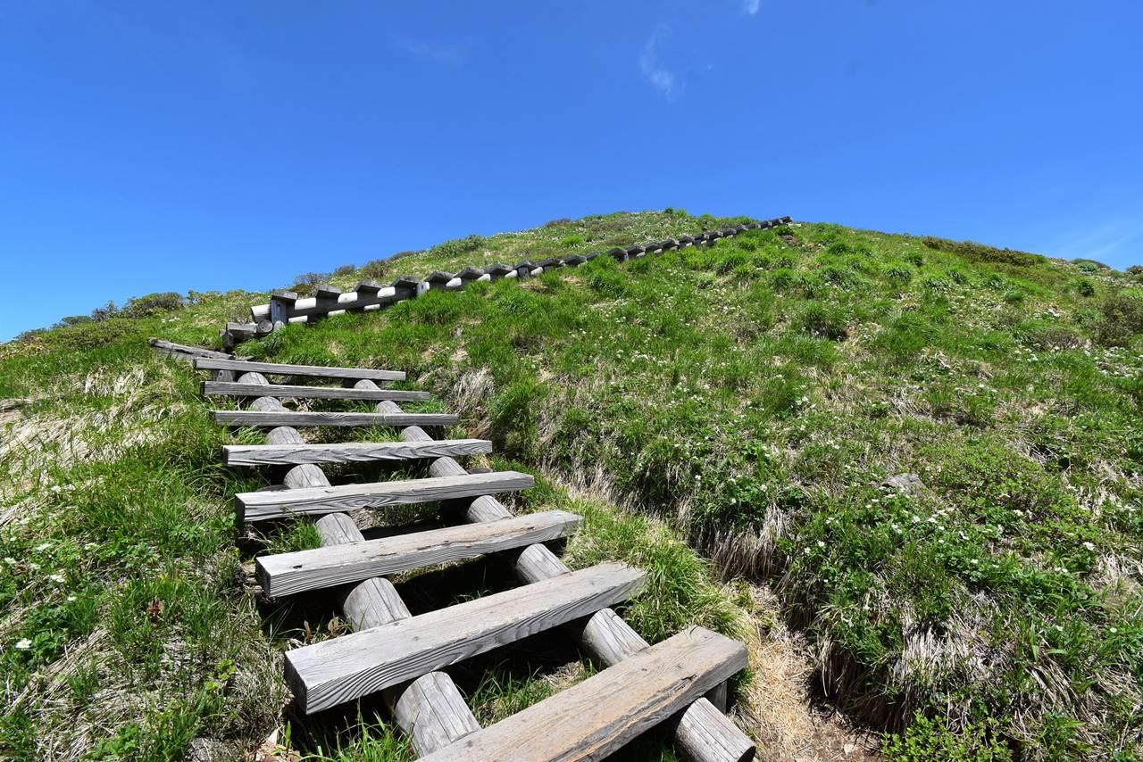 仙ノ倉山山頂の階段