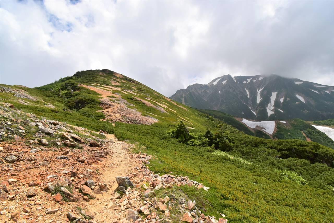 唐松岳~五竜岳 北アルプスらしいハイマツの稜線