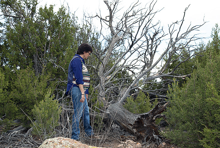 Jeanne Fair at Tsankawi on Bandelier National Monument standing in front of a dead tree wearing blue jeans and a vest.