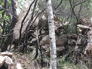 Plate-forme aménagée avec des murets en RG du Carciara