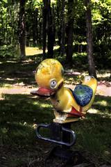 Duck In The Woods