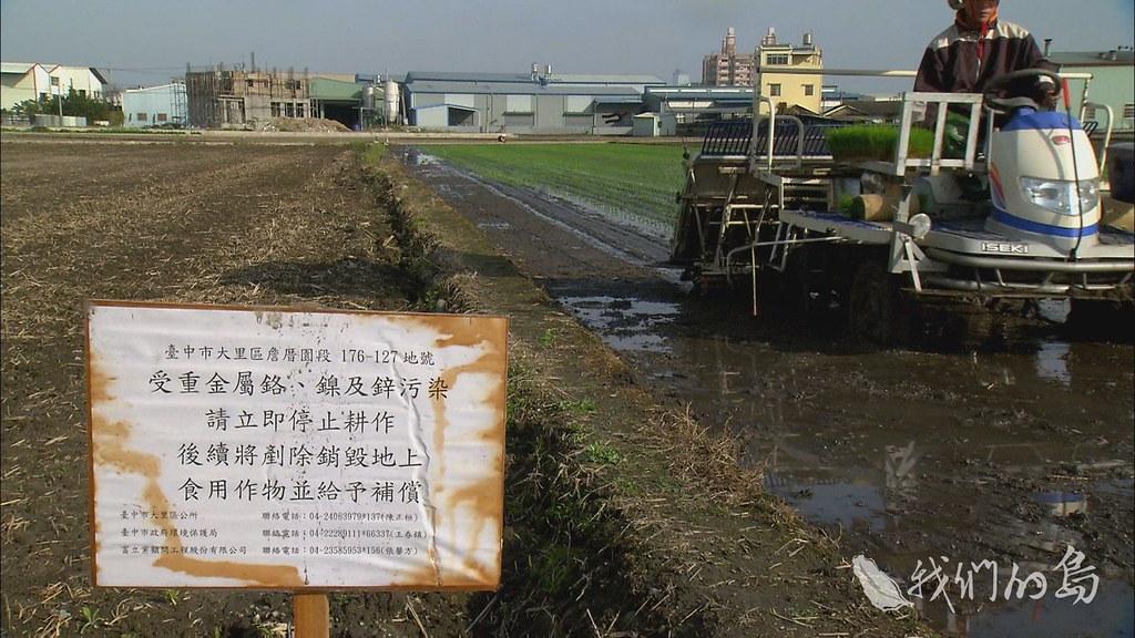 959-04s台中大里農地污染 攝影/柯金源