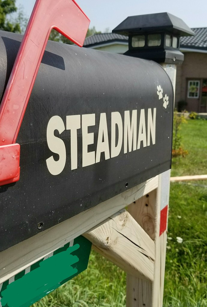 Stenciled Mailbox (Silhouette cutter)