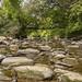 Mimico Creek 02