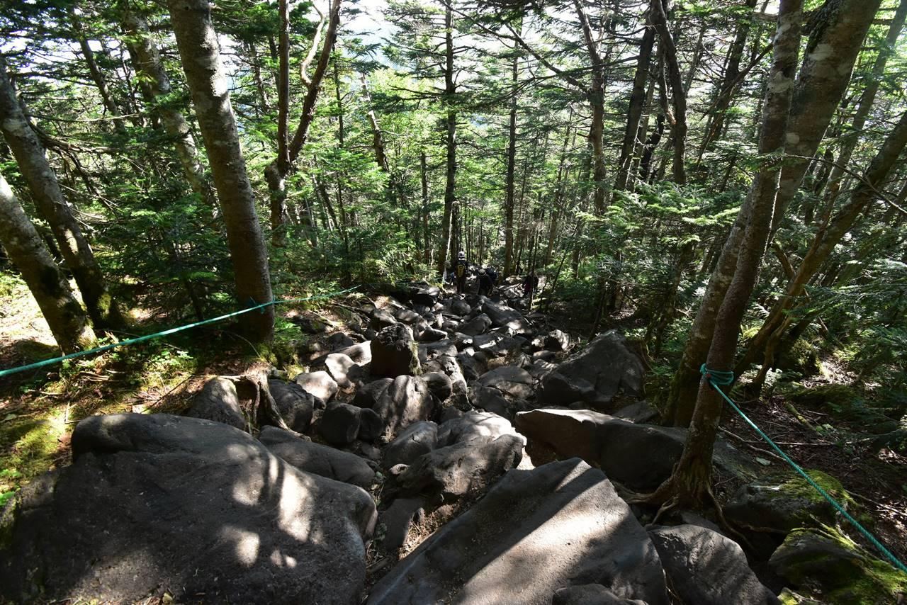 蓼科山 岩の登山道