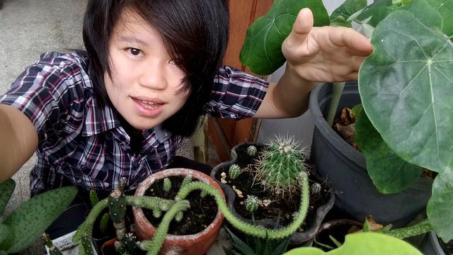 ใช้พริกฆ่าเพลี้ย cactus