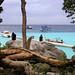 Lean back and chill at Raya island at Ter Bay