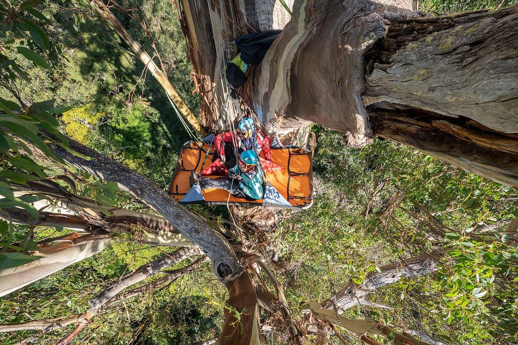 樹冠露營(Steve Pearce攝影)