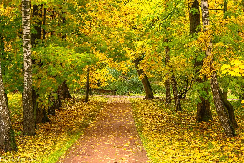 Октябрь в Царицыно
