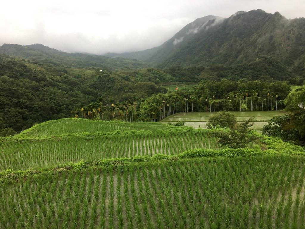 吉哈拉艾文化景觀素有天空梯田之稱。攝影:陳宣竹