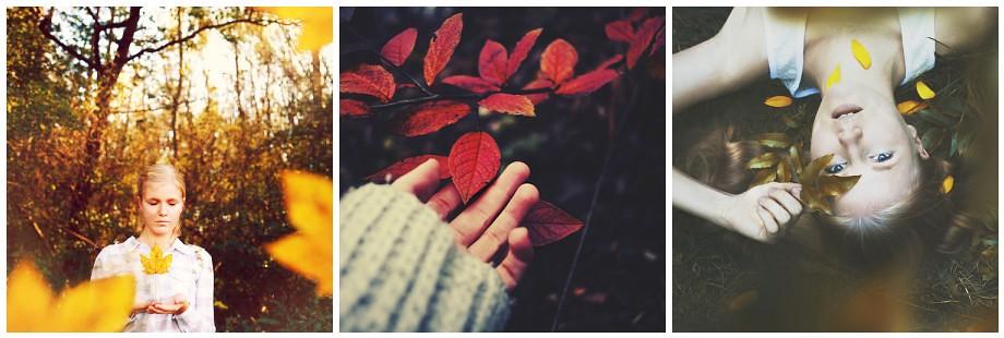 L'automne - Page 3 30892682218_ea8cbd373e_b