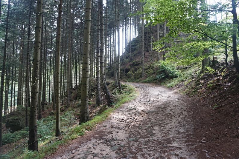 hiking Bohemian Switzerland